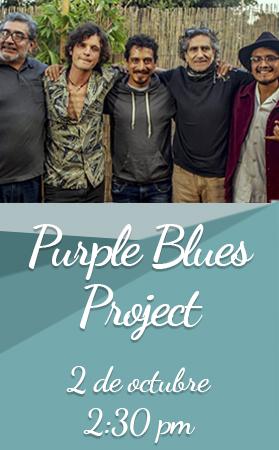 Purple Blues Project